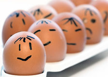 Some eggs Stock Images