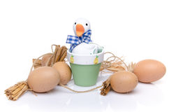 Some eggs around a duck Royalty Free Stock Images