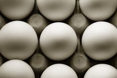 Some eggs in withe. Some eggs color withe for cooking Royalty Free Stock Images