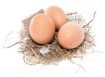 Some Eggs isolated on white Royalty Free Stock Image