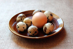 Some eggs of the quail and one of the hen. On the plate Stock Photos