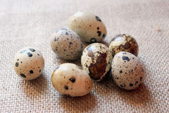 Some eggs of the quail on the sacking. Background Royalty Free Stock Photography
