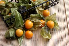 Exotic berries. Some exotic berries with the name physalis royalty free stock image