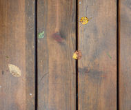 Some fallen leaves on brown wooden texture Royalty Free Stock Image