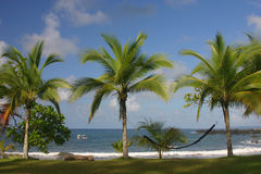 On some faraway beach. Palm trees and a hamac on a costa rica beach in Corcovado Park on pacific coast Stock Photo