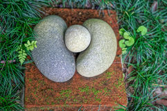 Some figured stones in the garden. Some figured stones in the grass Royalty Free Stock Photo