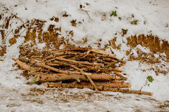 Some fire wood in a winter background in white. Color Royalty Free Stock Photography