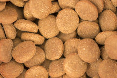 Some food for the dog. In spain Royalty Free Stock Photography