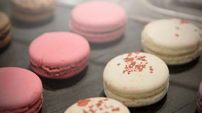 Some french macarons presented on a tray during a cocktail. Diagona row disposed stock photo