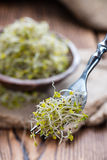 Some fresh Broccoli Sprouts. (close-up shot) on rustic wooden background Royalty Free Stock Photos