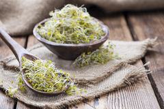 Some fresh Broccoli Sprouts. (close-up shot) on rustic wooden background Stock Photo