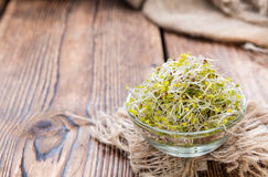 Some fresh Broccoli Sprouts Royalty Free Stock Photo
