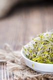 Some fresh Broccoli Sprouts Royalty Free Stock Photography