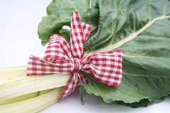 Some fresh chard Royalty Free Stock Photo