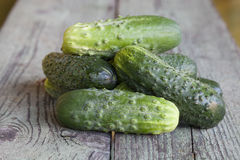 Some fresh cucumbers on a wooden board.  Royalty Free Stock Image