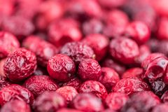 Some fresh Dried Cranberries selective focus; close-up shot. Dried Cranberries selective focus; detailed close-up shot Royalty Free Stock Photo