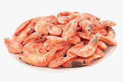 Some fresh frozen organic prawns. With ice Stock Images
