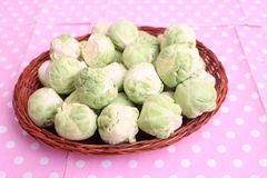 Brussels sprouts. Some fresh green brussels sprouts in a bowl Royalty Free Stock Photos