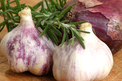 Some fresh organic garlic. And spices from the garden royalty free stock photography