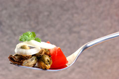 Some fresh organic mussel. With tomato and onion royalty free stock image