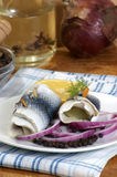 Some fresh organic rollmops. On a white plate royalty free stock image
