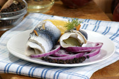 Some fresh organic rollmops. On a white plate stock image