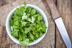 Some fresh Parsley (close-up shot) Royalty Free Stock Images