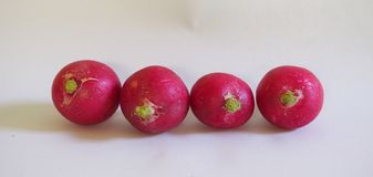 Some fresh radishes. On white background stock images