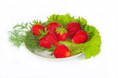 The some fresh red strawberry. The some fresh sweet red strawberry with greens royalty free stock images