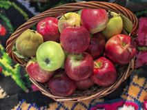 Fresh ripe red apples in a basket. Some Fresh ripe red apples in a basket royalty free stock photo