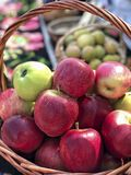 Fresh ripe red apples in a basket. Some Fresh ripe red apples in a basket stock image