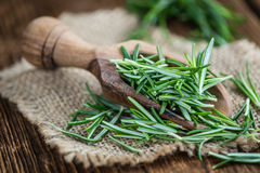 Some fresh Rosemary (close-up shot) Stock Photos