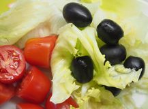 Some fresh salad. On a plate royalty free stock image