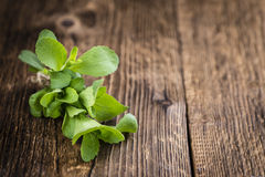 Some fresh Stevia leaves (selective focus). On a vintage looking background stock photos