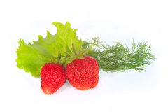 The some fresh sweet strawberry with greens Stock Photos