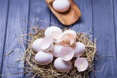 Some fresh eggs Stock Photography