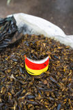 Some  fried  insect, Myanmar. Some  fried food  insect, Myanmar Stock Images