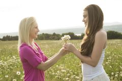 Some friends having fun in a daisy field Stock Images