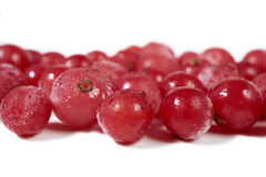 Some frozen currants on white. Close-up view of some frozen currants on a white background with copy space on the upper and lower side Royalty Free Stock Photos