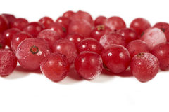 Some frozen currants on white. Close-up view of some frozen currants on a white background with copy space on the upper and lower side Royalty Free Stock Images