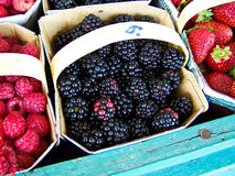 Some fruits Royalty Free Stock Images
