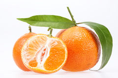 Some fruits of clementine isolated on white background Royalty Free Stock Photos
