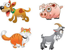 Some fun farm animals. Some funny farm animals cartoons Royalty Free Stock Image