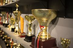 Golden winning cups. Some golden winning cups in the room stock images