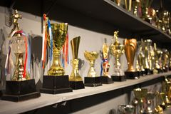 Golden winning cups. Some golden winning cups in the room royalty free stock photos