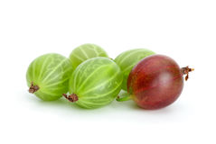 Some green and red gooseberries. Closeup of Some green and red gooseberries isolated on the white background Royalty Free Stock Photography