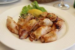 Some grilled cuttle-fish. On a plate Royalty Free Stock Photography