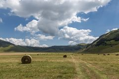 Some hay bales on Castelluccio di Norcia Umbria cultivated fie. Lds, with blue sky and white clouds Royalty Free Stock Photos