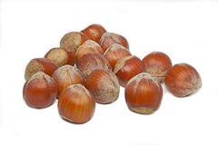 Some hazelnuts. On white background stock photography