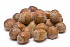Some Hazelnuts Isolated On White. Stock Images